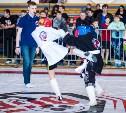 В Щёкино состоялся Фестиваль спортивных единоборств