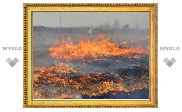 Огонь подбирается к деревне Языково
