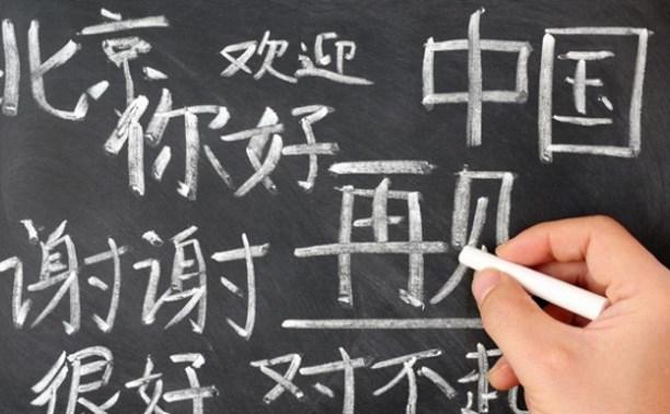 В Минобрнауки  рассмотрят программы по китайскому языку