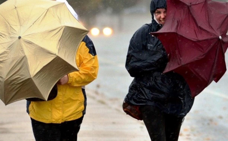 Погода в Туле 5 октября: облачно, дождливо и прохладно