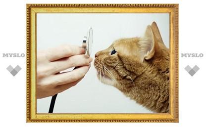 В Туле будет работать новейшая ветеринарная лаборатория