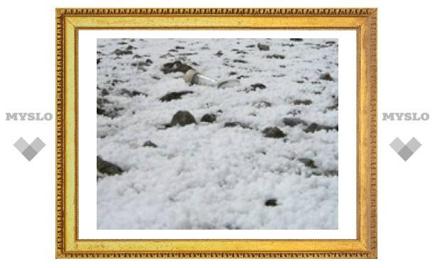 """В Туле прошел """"пенопластовый"""" снег"""