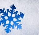 Выходные в Центральном парке: зимние узоры на снегу, вечеринка на катке и закрытие ёлки