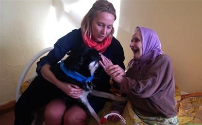 Тульским собаководам предлагают вступить в команду «собак-терапевтов»