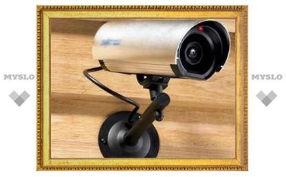 Установку веб-камер в Тульской области начали с участка «Лев Толстой»