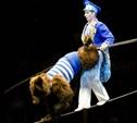 В тульский цирк приехали медведи-канатоходцы