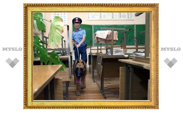 Полицейские проверят безопасность тульских школ к началу учебного года