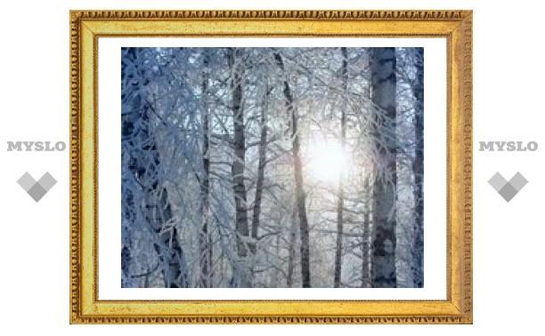 31 января: Сережки у луны - к пурге и морозу