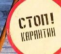 На территории предприятия в Новомосковске введен карантин по бешенству