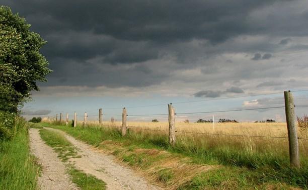 В субботу днем в Тульской области ожидается кратковременный дождь