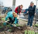 5 мая в Тульской области пройдет общеобластной субботник
