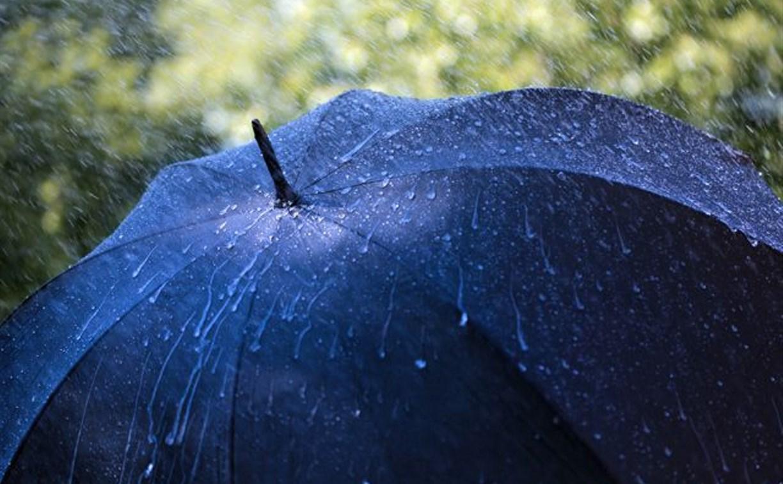 14 июля в Туле ожидается дождь