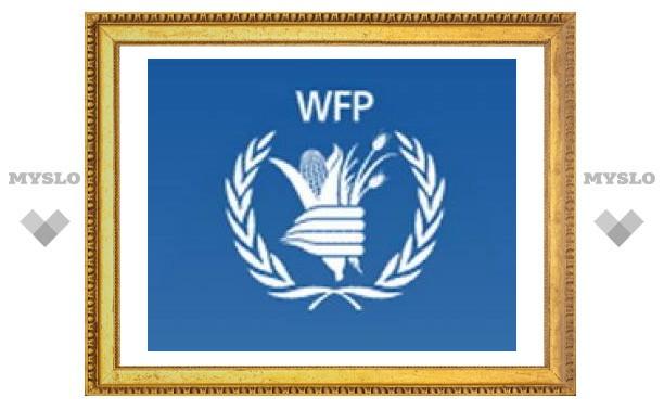 Продовольственная программа ООН сворачивает деятельность в России: обстановка стабилизировалась