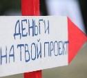 Тульским НКО выдадут более 6 млн рублей на развитие молодежной политики