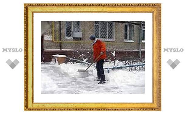 Единый санитарный день города прошел в Туле