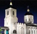 Зареченские храмы Тулы подсветят
