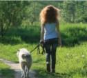 В Заречье появится площадка для выгула собак