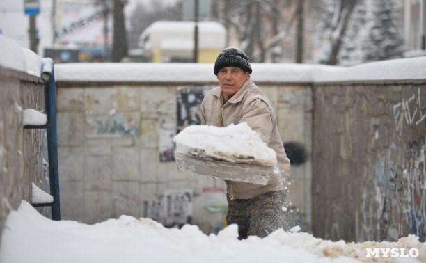 В Тульской области объявлен оранжевый уровень опасности из-за снегопада