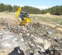 В Суворовском районе после обращения ОНФ ликвидировали несанкционированную свалку