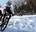 В Туле пройдет Всероссийский чемпионат по велосипедному спорту на шоссе