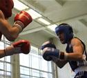 Два юных тульских боксера вышли в финал первенства округа