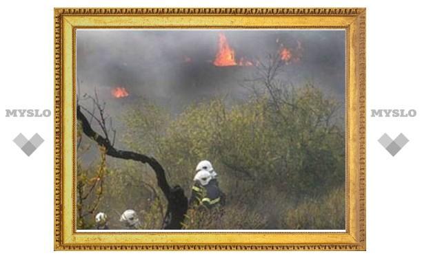 МЧС РФ пошлет два самолета на помощь греческим пожарным