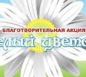В Тульской области впервые состоится благотворительная акция «Белый цветок»