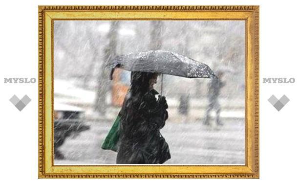 Выходные в Туле будут теплыми и дождливыми