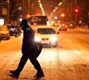 Тульская Госавтоинспекция напоминает пешеходам о правилах безопасности