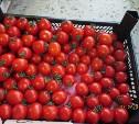 В Туле нашли санкционные помидоры и клубнику
