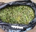 Житель Одоева осужден за хранение наркотического «гербария»