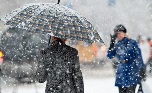 В понедельник в Туле ожидается снег с дождём