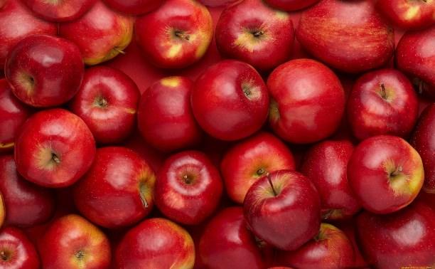 В Туле уничтожат почти 600 кг польских яблок