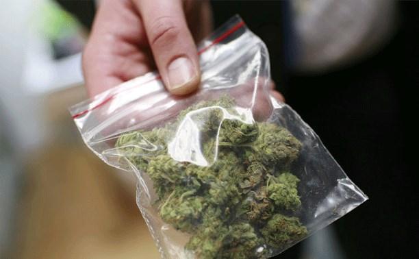 Житель Суворовского района выронил пакетик с марихуаной перед полицейскими