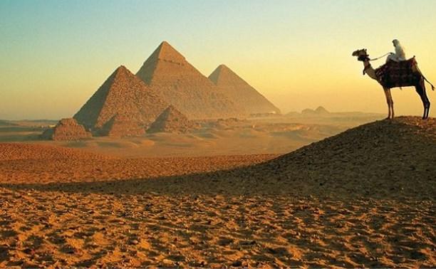 МЧС открыло горячую линию для туристов в Египте
