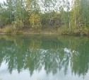 У утонувшей в Богородицком районе семьи остался четырехлетний ребенок