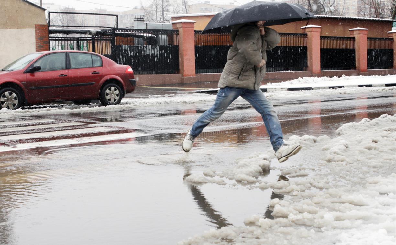 Погода в Туле 26 февраля: дождливо, ветрено и до +7
