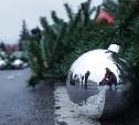 Новогодний криминал по-тульски: избитый снеговик, украденные мандарины, снятый с ёлки шар