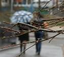 Погода в Туле 11 апреля: похолодание и небольшой дождь