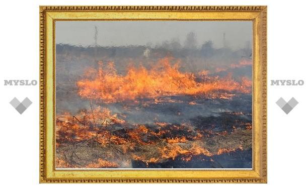 Пожарные заявляют о поджогах полей