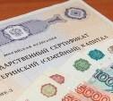 Правительство одобрило «заморозку» индексации материнского капитала