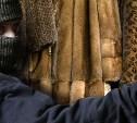 В Новомосковске задержаны похитители шуб