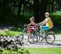 Тульские сотрудники ГИБДД проверят юных пешеходов и велосипедистов