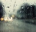 Погода в Туле 8 августа: дождь с грозой и ветер