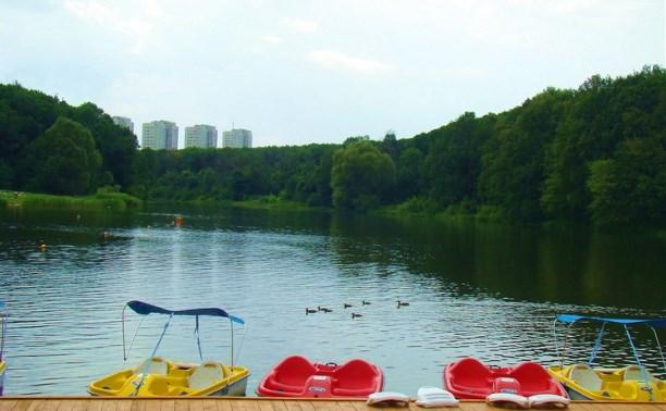 На пруду в Центральном парке обнаружен труп мужчины