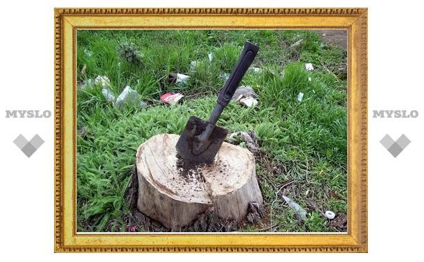 Туляк забил липчанина лопатой