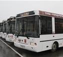 К весне в Туле появится 50 новых автобусов