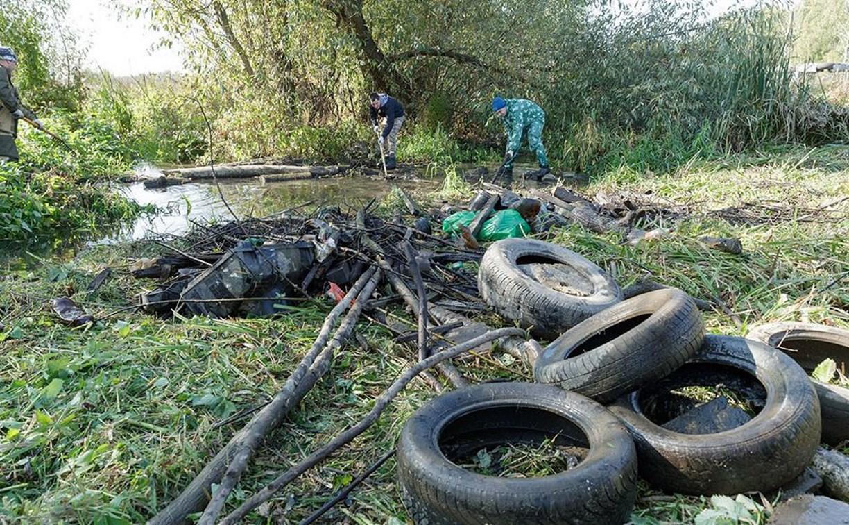 В Туле прошла экологическая акция по расчистке Щегловского ручья