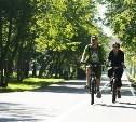 Велодорожки между Комсомольским парком и Баташёвским садом закончат к 1 сентября