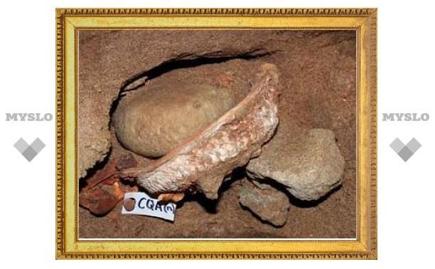 Ученые нашли доисторическую химическую лабораторию